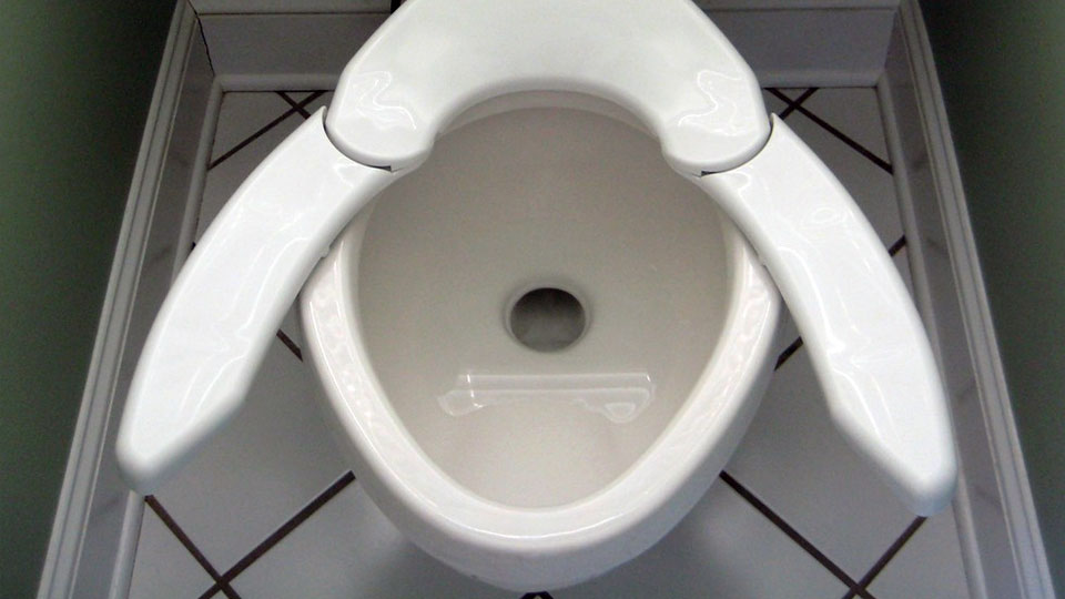 one-size-fits-all-toilet-seat-9480